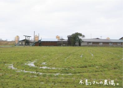 木島さんの農場