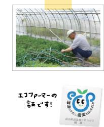 富山県のエコファーマー越誠一さんにお話を聞いてきました。