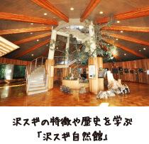 沢スギの特徴や歴史を学ぶ「沢スギ自然館」