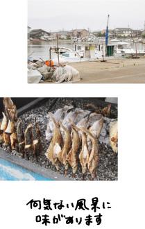 生地の漁港と、地元の魚。何気ない風景に味があります。