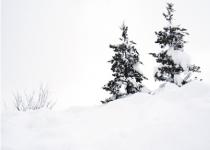 桜井城も雪景色です。